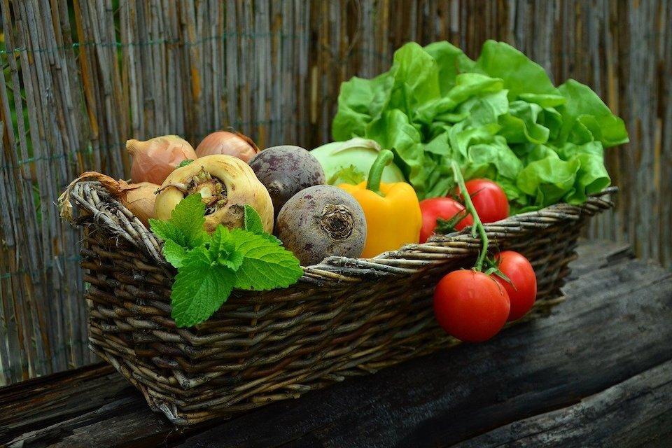 Jedzenie intuicyjne w chorobach